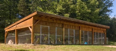 hunting dog houses multiple dog kennel dog kennels pinterest dog dog pen and dog houses
