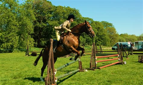 training active ranch free images outdoor track jumping rider show