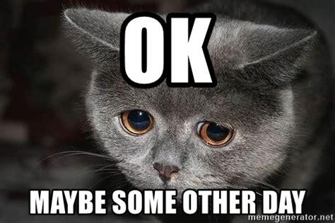 Sad Ok Meme - ok maybe some other day sad cat meme generator