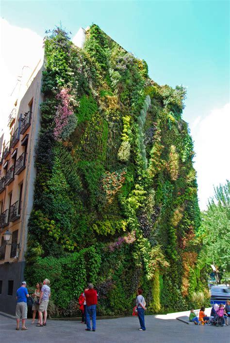 giardino verticale madrid il giardino verticale a madrid vivere a madrid