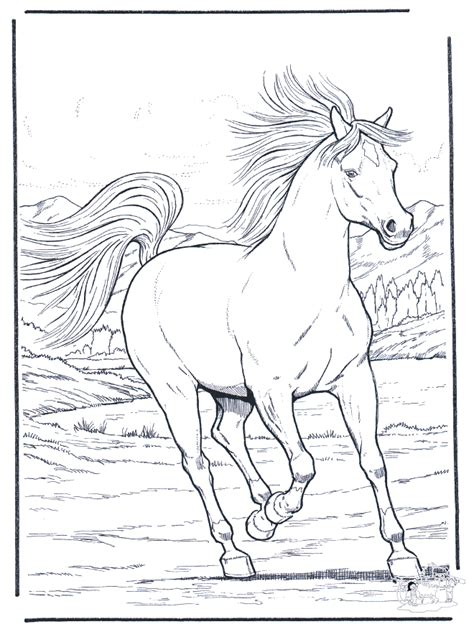 free coloring pages of outline of a horse