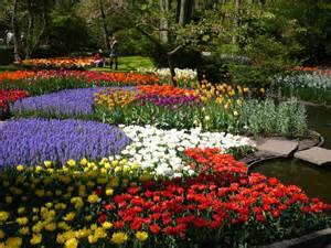 Keukenhof Flower Gardens Colorful Keukenhof Gardens World For Travel