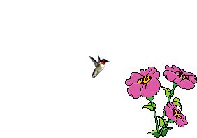 Gifs Anim 233 S Oiseaux Singing Bee Powerpoint Template