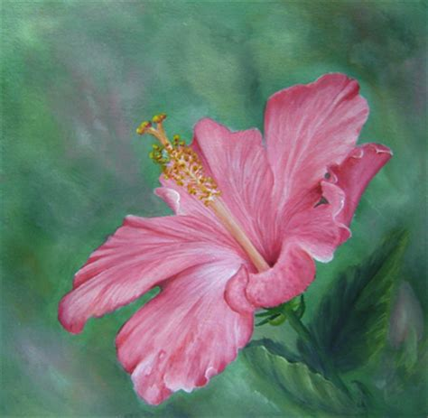 flower pattern painting hibiscus flower acrylic painting patterns