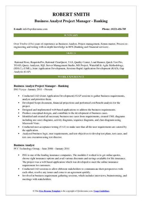 business analyst with project management experience resume