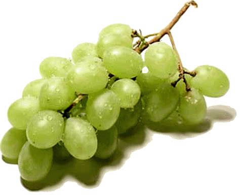imagenes de uvas kangris pequenas coisas do amor uva