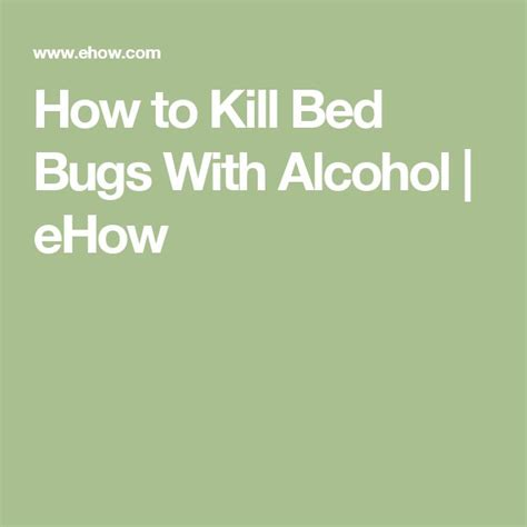 do bed bugs die with alcohol do bed bugs die with alcohol 28 images bug news what