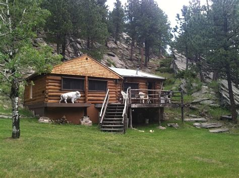 Custer Cabin Rentals custer cabin rental lost bison cabin a great place to