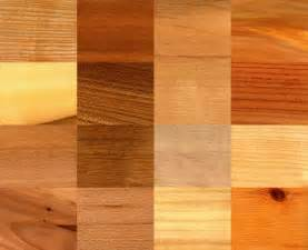Best Wood Kitchen Cabinets Diy Wood Stain Guide For Beginners