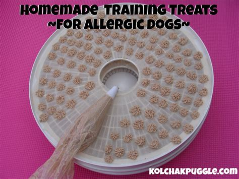 what treats are for puppies treats for dogs with allergies kol s notes
