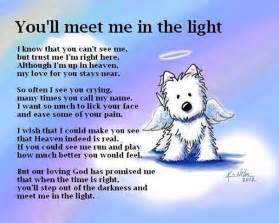 dog you 39 ll meet me in the light poem