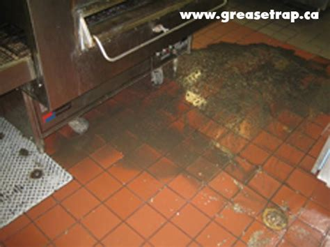 clean room grease 7 best grease trap overflow images on grease the o jays and floors