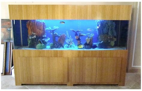 Cool Fish Tanks   Building With Bamboo