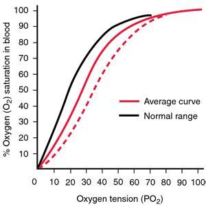 bohr effect diagram pasteur effect definition of pasteur effect by
