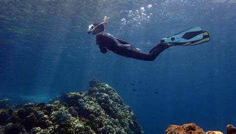 free diving snorkeling local dive thailand