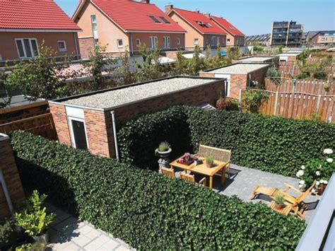 großen garten gestalten sichtschutz f 252 r terrasse eine gr 252 ne wand sch 252 tzt ihre