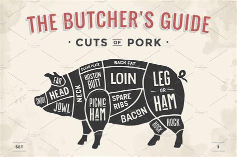 pig diagram butcher cut of set butcher sheme pork illustrations