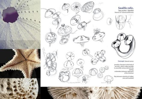 jewellery design inspiration 3d printed jewelry inspired by nature part 1 fashionlab