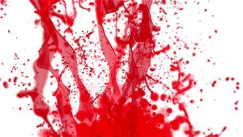 blood paint paint white stock footage