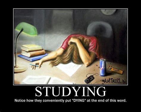 Funny Study Memes - funny funny education