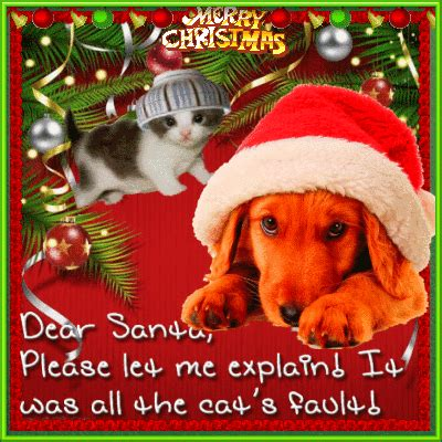 funny dog christmas  humor pranks ecards greeting cards