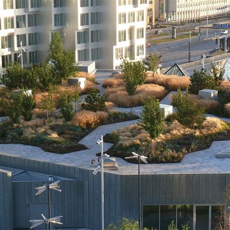 rooftop landscaping 25 best ideas about rooftop gardens on pinterest