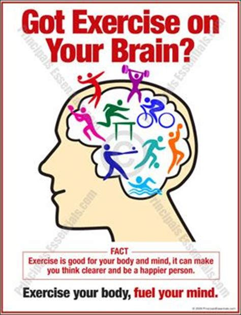 8 Great Ways To Exercise Your Brain by 1000 Images About Brain Facts On Brain Facts