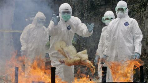 W Deadly Disorders by The Deadliest Potential Pandemics Facing The World Right Now