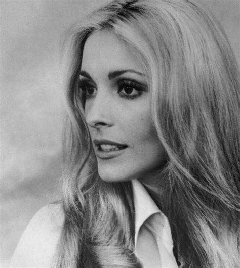 picture of sharon tate 408 best images about sharon tate on pinterest terry o