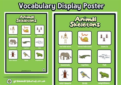 new year animals ks2 new year 3 science animals including humans display