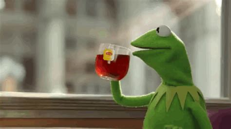 Animated Gif Meme Generator - kermit sipping tea gifs find share on giphy
