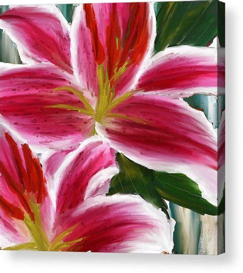 25 best ideas about lily 25 best ideas about lily lily on pinterest calla lily