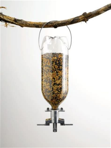 1000 images about birdfeeder birdseed recipes and crafts