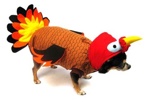 is turkey bad for dogs turkey large costumes turkey big costume