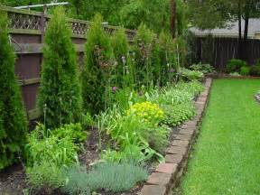 fence line landscaping image showing arborvitae planted along fence line fences