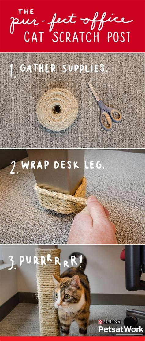 how to make your office cozy proyectos caseros para entretener a tu gato taringa