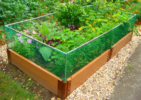 garden like your depends on it the organic prepper