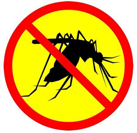 Stop Demam Berdarah Dengue obat anti nyamuk tradisional
