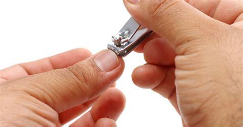 imagenes uñas cortas limpieza de u 241 as esencial para evitar enfermedades en