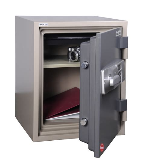 security safe home designs project