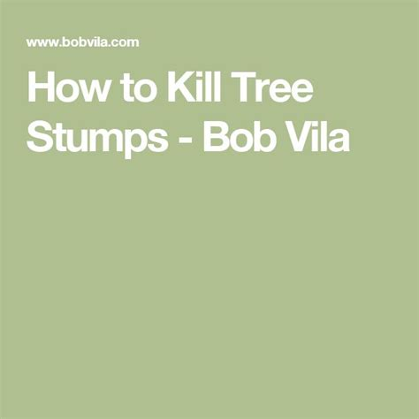 how to kill a bush best 25 kill tree stump ideas on killer