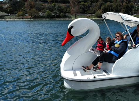 swan boats in echo park about wheel fun rentals news