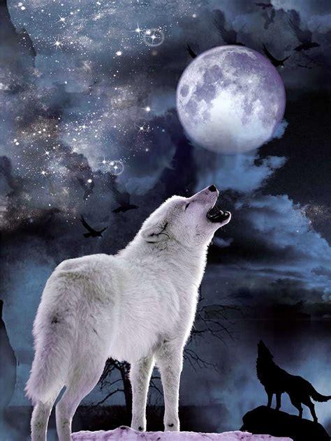 wolf moon moon www imgkid com the image kid has it