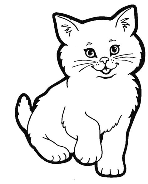 cat pictures for kids az coloring pages