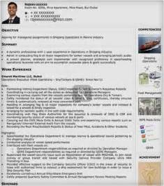 Visual Resume Exles by Exle Resume Visual Resume Templates