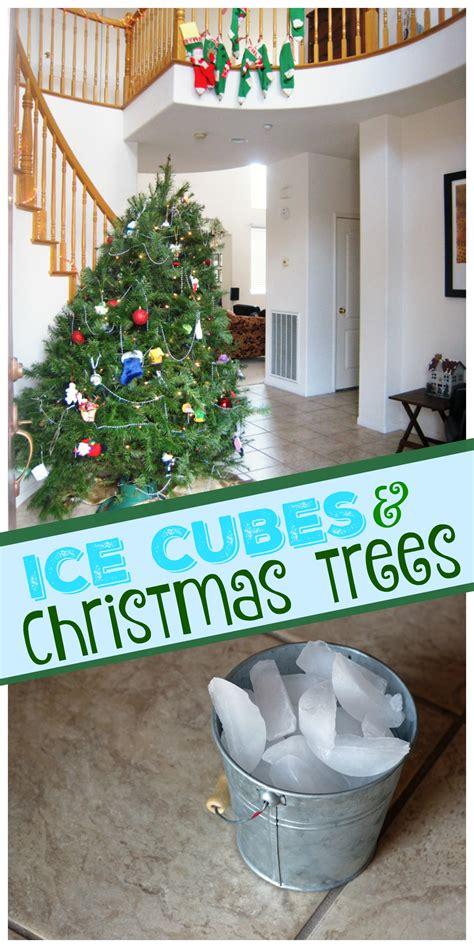 ice cube christmas tree cubes and trees they work for me as