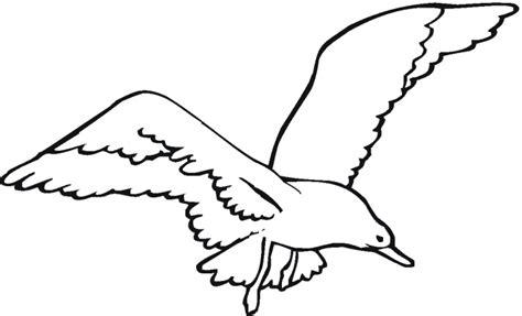 seagull cartoons clipart best