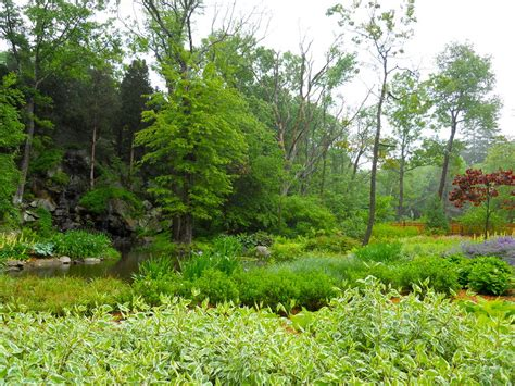 andrew grossman upholstery garden design morongo valley ca photo gallery wetland