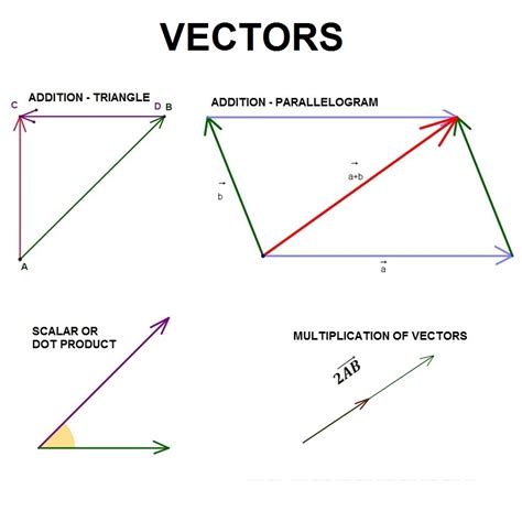 vector tutorial maths mathemania make learning fun