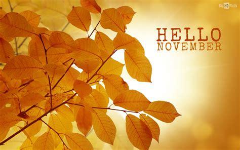 imagenes de welcome november hello november hd wallpaper bighdwalls